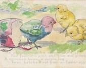 Oddest Chick I've Ever Seen- 1900s Antique Postcard- Colored Easter Egg- Tie Dye Chick- Edwardian Easter Decor- Paper Ephemera