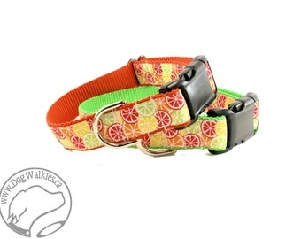 "Lemon, Lime and Oranges - Dog Collar - 1"" (25mm) Wide - Quick Release or Martingale Dog Collar - Choice of style, webbing color and size"