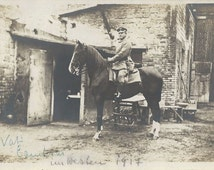 Western Front 1917 - Antique War Horse and Officer, WWI Silver Gelatin Real Photo Postcard