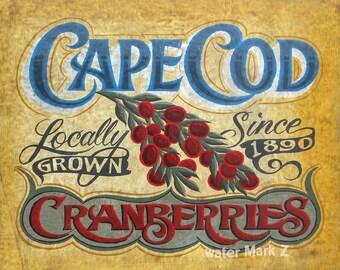 Cape Cod   Cranberries  Print