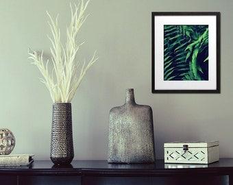 Botanical Art Print, Fern Art, Nature Poster, Oversized Wall Art, Green Print, Leaf, Nature Decor, Woodland Art, Office Decor - Fern Shui