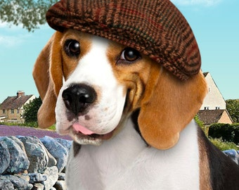 Funny Smiling Beagle Dog Wearing a Cap