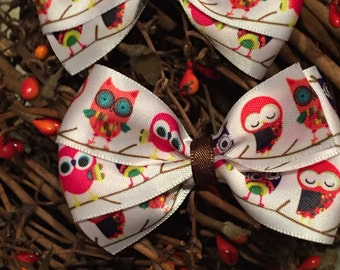 Autumn Owl Ribbon Bow Clips - Set of 2