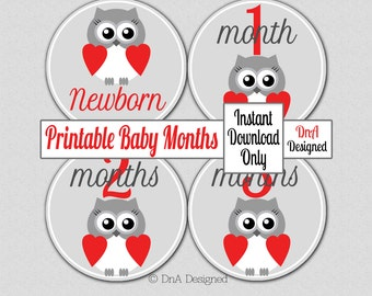 Printable Owl Baby Month Stickers - Instant Download - Iron On - Shower Gift -  Digital - DIY - {120BM}