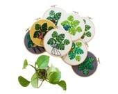 JULY MONSTERA PLANT Pattern - Pdf Embroidery Pattern - Monstera Plant Embroidery Pattern by Sarah K. Benning - #skbdiy