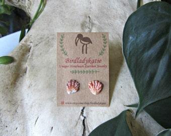 Kitten's Paw Sea Shell Earrings