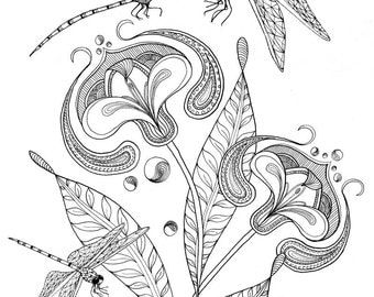 adult colouring pages of dragonfly and flower illustration printable coloring pages as an instant digital download