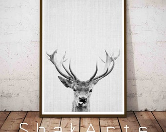 Deer Prints, Deer Antler, Deer Antler Decor, Woodland Nursery, Rustic Nursery Decor, Hunting Nursery, Hunting Wall Decor, Rustic Nursery