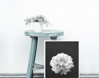 Flower on black print - Black and white art print - Modern home decor - Black and white art - Printable flower - Contemporary art prints