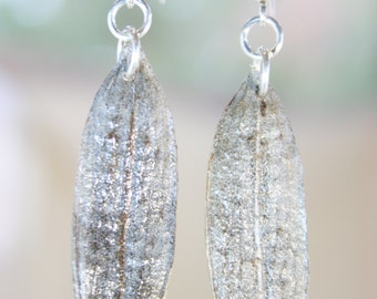 Australian Native Iris Seed Pod Earrings - Handmade