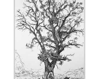 Oak Tree / Original handmade illustration / Pen on paper A3 / Trees from the Forest