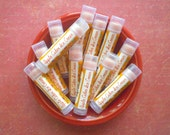 Apple Cider Ice Cream Vegan Lip Balm - Limited Edition Winter Holidays Flavor
