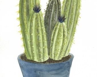 Potted Cacti Watercolor - Print