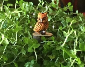Fairy garden, micro mini owl, tiny owl, teensy owl, miniature garden, micro owl, miniature owl, miniature garden owl, micro fairy owl