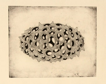 Hand made original etching 'Vacare'