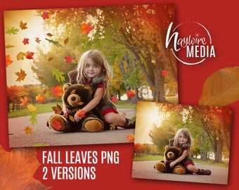 2 PNG Versions of Fall Leaves Falling on a Transparent Digital Background - Photoshop Overlays - Isolated Background
