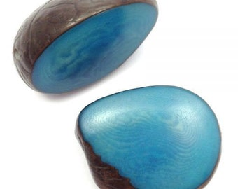 Tagua disc Pearl, turquoise, 30-50 mm, 1 piece