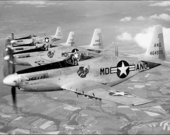 24x36 Poster . F-51H Mustang P-52 Maryland Ang Guardian Angels 1952