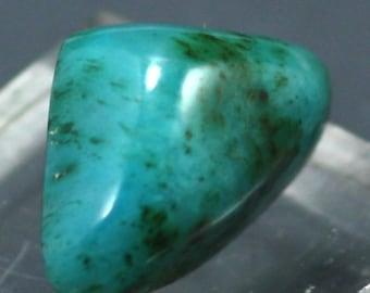 Gem Silica (Chrysocolla) Cabachon, Ray Mine Arizona - Mineral Specimen for Sale