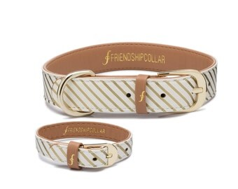 Devoted Doggy FriendshipCollar