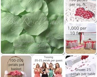 Celedon Rose Petals Value Pack