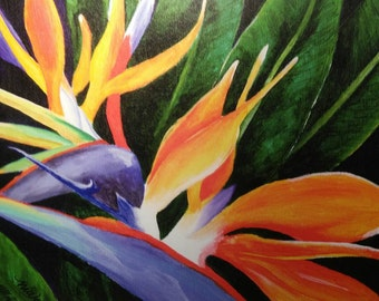 Bird of Paradise Gallery Wrap Print 16x20