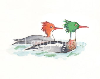 Greeting card, Red-breasted Mergansers
