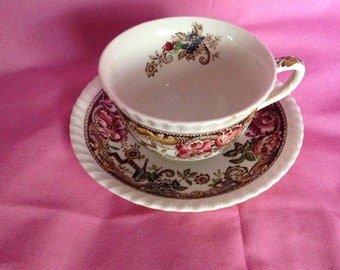 Johnson Brothers DEVONSHIRE (Brown) China Cup and Saucer Set