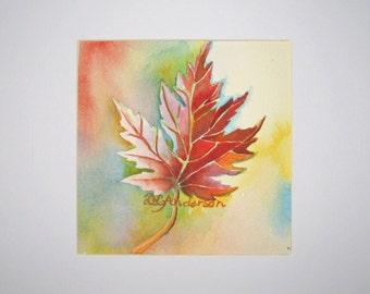 Maple Leaf II watercolor