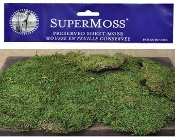 Super Moss Preserved Bright Green Natural Sheet Moss Country Primitive Craft Floral Décor (FREE SHIPPING)