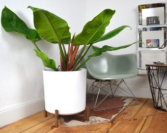 XL Low Mid Century Planter Architecture Pottery Plant Stand Flower Pot Retro Vintage Walnut