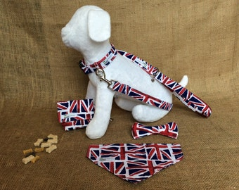 Union Jack Dog Gift Set