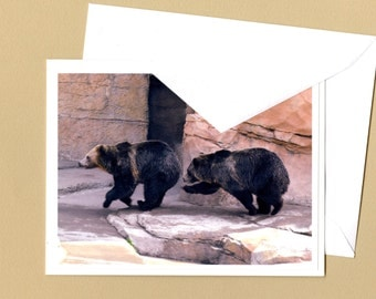 Grizzly Bears Photo Greeting Card