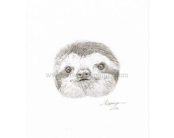 Little Sloth Head Original Drawing