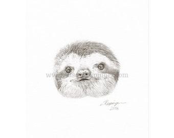 Little Sloth Head Original Drawing