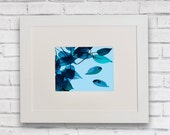Limited Edition White Frame Leaf Print, Abstract leaf print, Blue leaf print, Leaf Border Print, Tree Print, Botanical Print, 29