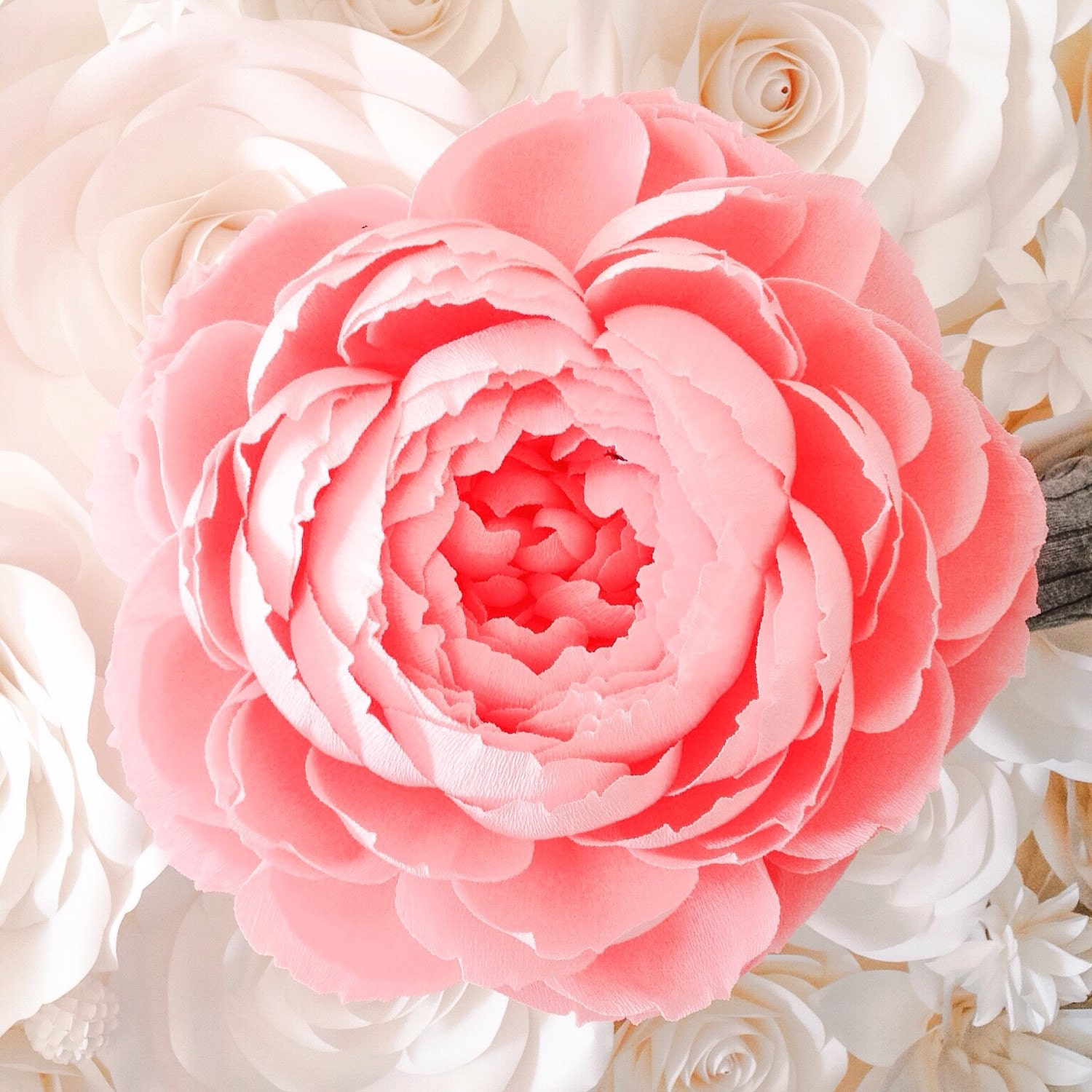 Paper Flower Giant Crepe Paper Peony Giant Paper