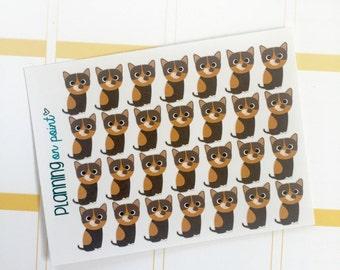 Tortoiseshell Kitten Cat Planner Stickers!