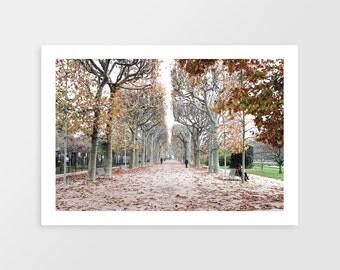 Jardin des Plantes | Paris, France