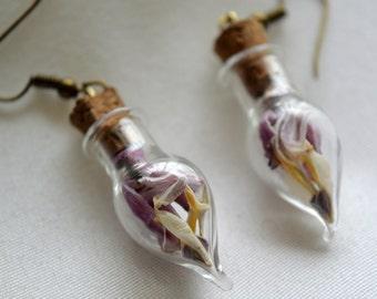 Real Dried Bleeding Heart Flower Magical Tear Drop Vial Earrings