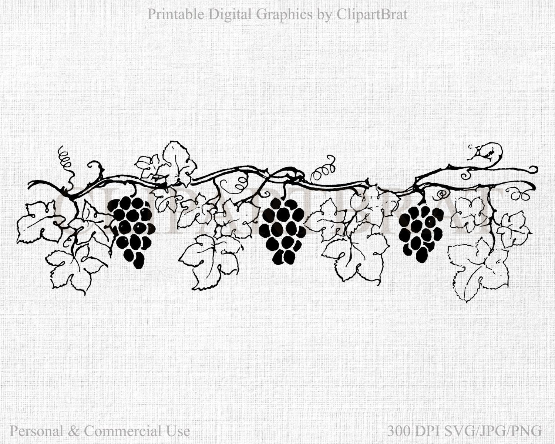 GRAPE VINE CLIPART Commercial Use Clipart Grapes Digital