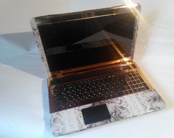 Laptop in the python skin