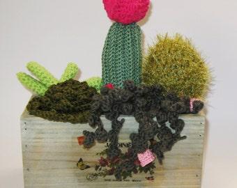crochet succulent & cactus arrangement in wooden box