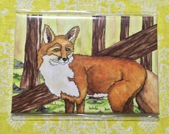 Fox- magnet