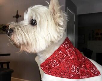 Small Classic Red Dog Bandana
