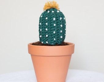 Crochet Cactus Ferocacto Immortal. Amigurumi