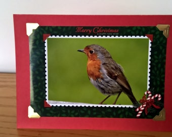 Christmas Cards, Robin