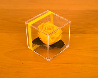 Real Roses that last for a year in acrylic cube is the perfect gift