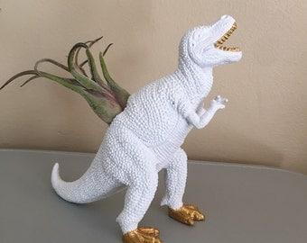 t rex dinosaur planter with live air plant