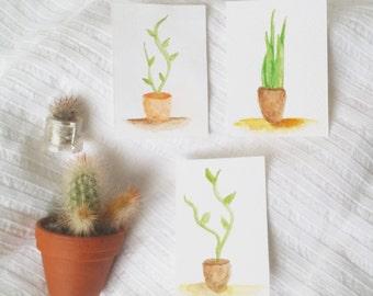 Original tiny watercolour plant paintings